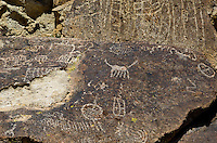 711060002 native american petroglyphs on volcanic rock along fish slough road in mono county california