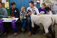 From left to right: Diane Stratton,Champion Drive 4H Leader; Chance Lee, 5 from Quincy, Wash.; Alex McGee, 14, from Lakeridge Middle School with his lamb named after his friend sitting next to him, John; John Wiles, 14, also from Lakeridge Middle School, with his lamb named after his friend, Alex; wait to show their lams in the auction ring at the Junior Livestock Show at the Washington State Spring Fair on April 19, 2015. <br /> <br /> Students in the FFA and 4H programs participate in the auction of livestock including steers, lambs and hogs in the Northwest Junior Livestock Show at the Washington State Spring Fair in Puyallup, Wash. on April 19, 2015.  (photo &copy; Karen Ducey Photography)