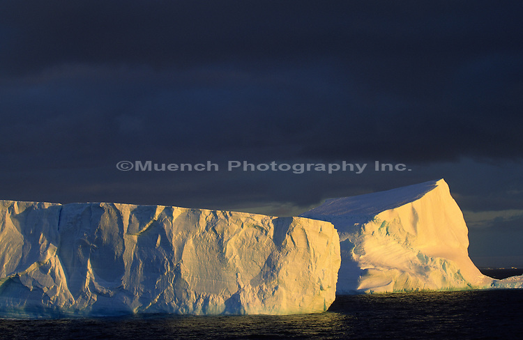 """""""Icebergs, Paulet Island area   """""""