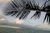 The pacific Ocean beside the island of Kiribati. The islands, and their way of life, are endangered by rising sea water levels which are eroding the fragile atoll, home to approximately 92,000 people.