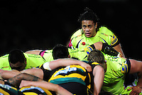 TJ Ioane of Sale Sharks looks on at a scrum. TJ Ioane of Sale Sharks looks on at a scrum. Aviva Premiership match, between Northampton Saints and Sale Sharks on December 23, 2016 at Franklin's Gardens in Northampton, England. Photo by: Patrick Khachfe / JMP