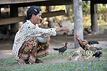 Mean Ounch, 50, feeds her chickens in Sretreng, a village in the Kampot region of Cambodia.