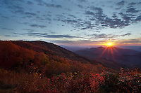 The sun creates a backlit effect on the fall colors at sunrise just off the Blue Ridge Parkway.