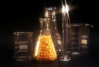 OGM.GMO 2