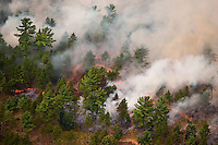 Aerial view of a prescribed burn in the Manistee National Forest, Michigan, USA