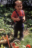 Farm boy, child age 3, toddler, in overalls jeans outside in garden with baskets of freshly picked vegetables, wearing red shirt and looking into camera