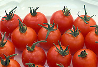 Tomatoes Gardener's Delight cherry type tomato variety picked and red ripe on a plate