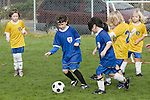 Albany, CA Girls sages six to eight competing in soccer game