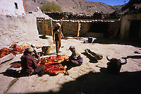 Preparing the winter's meals. Dhi Gaon, Mustang, Nepal, 2008