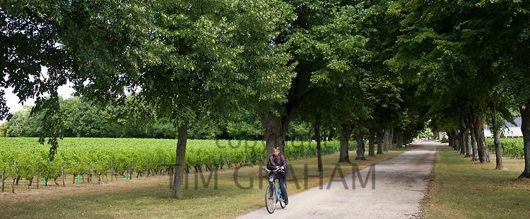 French woman cycling near Azay le Rideau, Loire Valley, France