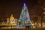 Boston's Christmas tree and the Massachusetts State House on Boston Common in Boston, Massachusetts, USA