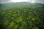Aerial view of rain forest canopy.  South coast region of Bioko Island, Equatorial Guinea, West Africa.