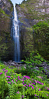Hanakapi'ai Falls, a 300-ft. waterfall on Kaua'i, with flowers and ferns in the foreground.