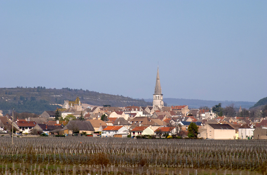 vineyard village meursault cote de beaune burgundy france