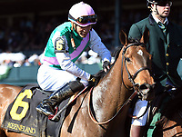 LEXINGTON, KY - APRIL 08: Paulassilverlining wins the 16th running of the Madison (Grade 1) $300,000 for owner Juddmonte Farms, trainer Chad Brown and jockey Jose Ortiz.  April 08, 2010