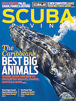 Scuba Diving Magazine, September / October 2012, magazine cover use, editorial, USA, Image ID: Humpback-Whale-0219