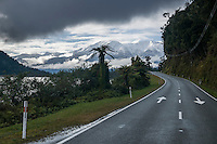 Road along scenic Lake Wahapo in morning with Mt. Adams in background, Westland National Park, West Coast, World Heritage Area, South Westland, New Zealand