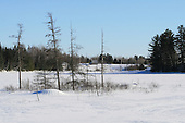 Winter scenic, sugar cabin across snow covered marsh