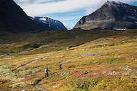 Female hiker hikes on trail in Ladtjovagge with Tolpagorni - Duolbagorni mountain in distance, Lappland, Sweden