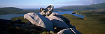 Rock formations in Port Pegasus. Stewart Island National Park (Rakiura). New Zealand