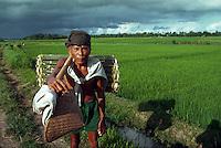 Rice farmer, Bali, Indonesia