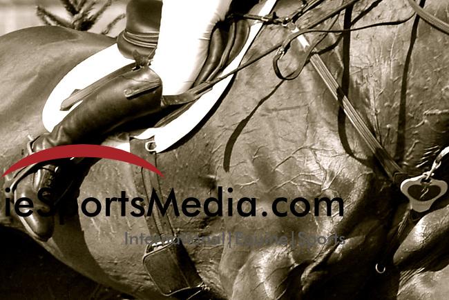 International Equestrian Sport coverage