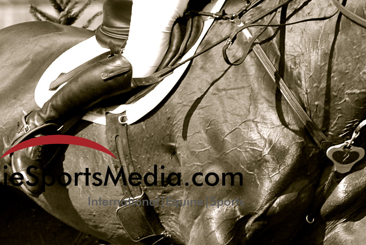 International Equestrian Sport coverage
