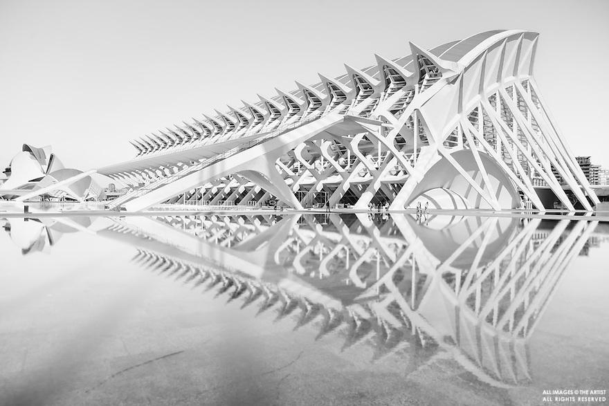 Ciudad de las Artes y las Ciencias - Valencia. © conflagratio