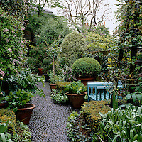 A pale blue garden chair is partly concealed by the lush planting in this London garden