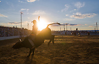 New Jersey - Cowtown Rodeo