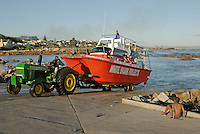 Boat back at port after Great White Shark watching and diving tour, Gansbaii, South Africa