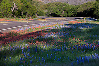 Bluebonnets and Indian Paintbrush wildflowers adorn the side of the Mopac Expressway Loop 1 in the hill country of south of downtown Austin, Texas. Beautiful backcountry landscape photo postcard - Stock Image.