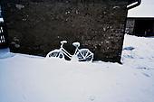 Niegowa 01.2010 Poland<br /> Three atmospheric forces: rain, snow and frost have changed into an ecological disaster the Myszkowski district in the Czestochowskie province, located 230 kilometers south of Warsaw. Amost 95% of all trees are down.Thousands of homes are left without electricity.<br /> Photo: Adam Lach / Napo Images for Newsweek Polska<br /> <br /> Wstepnie &quot;tylko&quot; 95% scietych drzew w dwoch powiatach. 0.5 miliona metrow szesciennych zniszczonych lasow..Tysiace gospodarstw bez pradu. Wszyscy maja swiadomosc, ze na kumulacje trzech niekorzystnych .zjawisk atmosferycznych rady nie ma.Trzy zjawiska kt&oacute;re zamienily jeden z obszarow Polski w istna katastrofe ekologiczna: deszcz, snieg i szadz.<br /> Fot: Adam Lach / Napo Images dla Newsweek Polska