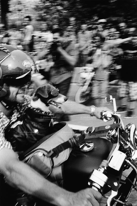 Switzerland. Canton Ticino. Lugano. Swiss Harley days.  Bikers gathering.  Parade of Harley Davidson motorbikes. A biker with his dog. 17.07.10 © 2010 Didier Ruef