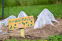 "Sign on community garden for children, ""pumpkin patch"", Yarmouth Maine"