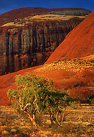 The Olgas at Sunset,Uluru National Park, Northern Territory, Central Australia