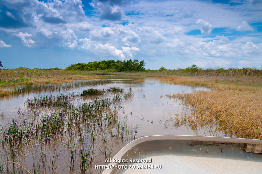 Everglades national park marshes from a boat