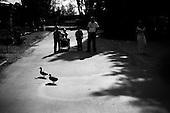 Wroclaw, Poland, April 4, 2009:<br /> Visitors watching goose pass from one pond to another, at the .Wroclaw Zoo.(Photo by Piotr Malecki / Napo Images)..Odwiedzajacy ogladaja dzikie kaczki w Zoo..Wroclaw, Kwiecien 2009.Fot: Piotr Malecki / Napo Images