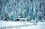 A cabin sits at the base of a mountain in front of snow covered trees.