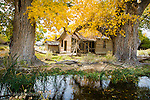 2nd Annual Great Nevada Photographic Exploratory Photographic Expedition - 2014