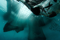 Hanging cages to hold reef fish before transport to China and Hong Kong.  These cages are just off the coast of Bimi, Indonesia..Initially reef fish only came from the South China Sea, but transport developed and fish now come from all over S.E. Asia.  The whole reef fish trade crashed with the 97-98 HK stock market crash.  LRF trade is directly linked to economy.  With China coming online financially the trade is booming.  These fish are often used for celebratory meals in Hong Kong, but in Guangzhou the fish are so cheap and the apartments are so small that many people eat out...  And the stereotype is that there is lots of food left on the table.  Often a fish is popular because of its color... more than its taste.