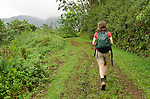 Woman hiking on the Kuilau Ridge Trail, Lihue-Koloa Forest Reserve, Kauai, Hawaii