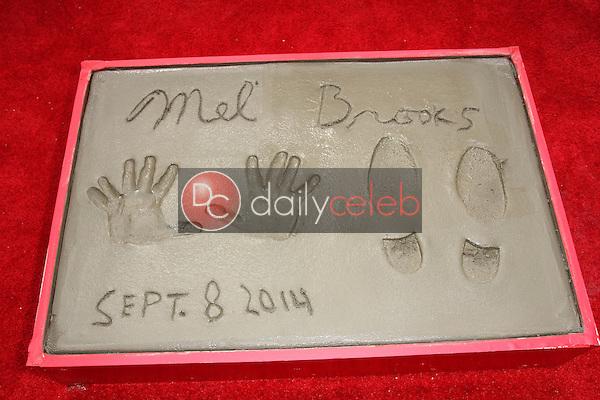 Mel Brooks handprints<br /> Mel Brooks Hand and Footprint Ceremony, TCL Chinese Theater, Hollywood, CA 09-08-14<br /> David Edwards/DailyCeleb.com 818-249-4998