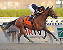 Aqueduct Fall Stakes Action 2011