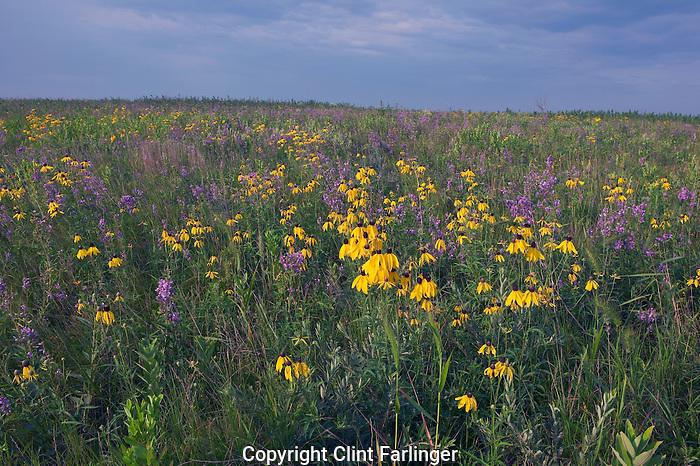 Prairie Preserve Prairie State Preserve