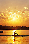 Sunrise on the Montlake Cut woman rowing on calm waters