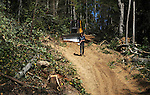 In order to get to the acres with the timber for logging, the lumber company has to create the roads used for dragging the trees to the drop site. A bulldozer clears a path through the trees before any work can get under way. Eventually the roads will be gravelled over to make it easier for the trucks, but this process takes around $70,000 a year in material costs. <br /> Photo by Rachael Le Goubin