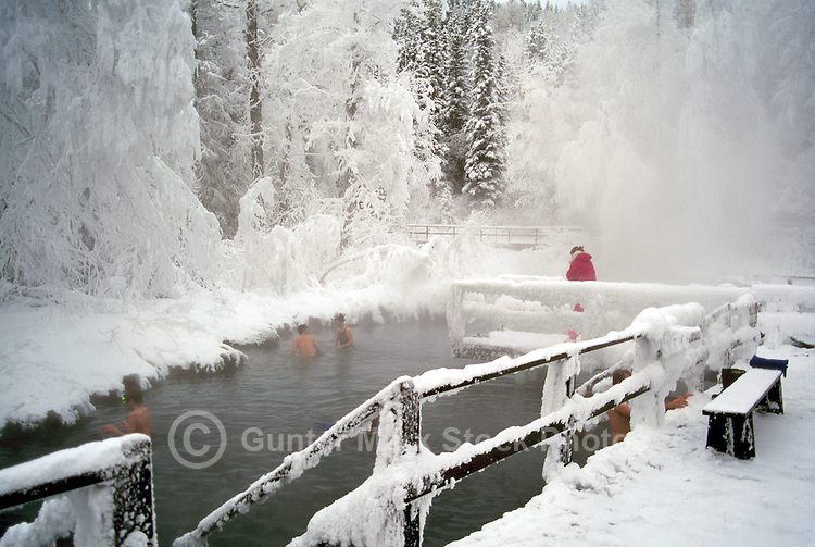 People soaking in Snow Covered Liard Hot Springs in Liard River Hot Springs Provincial Park, Northern British Columbia, Canada, in Winter