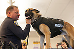 K-9 officer gets bulletproof vest