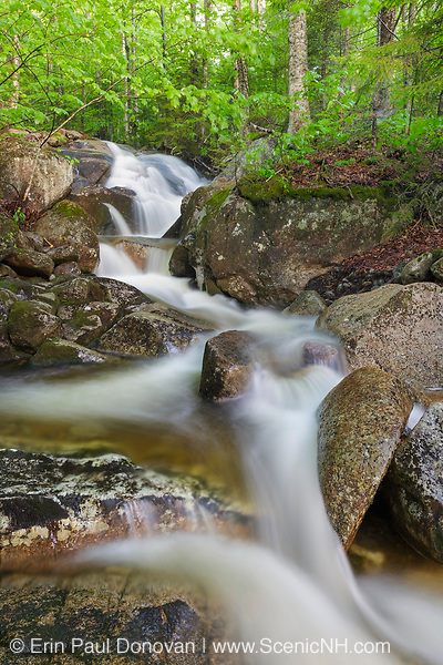 Cascade along Clough Mine Brook, a tributary of Lost River, in Kinsman Notch of Woodstock, New Hampshire USA after heavy rain during the spring months.